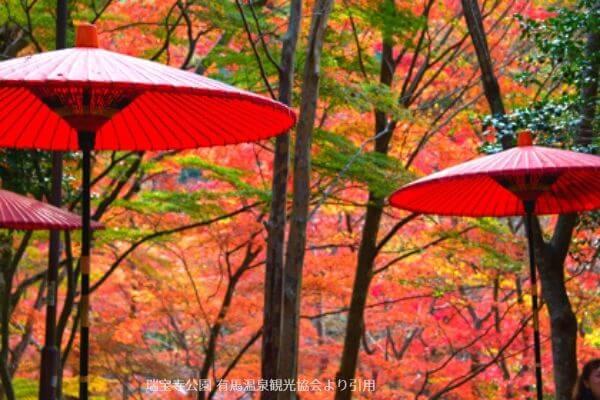 瑞宝寺公園内もみじ茶屋からの紅葉