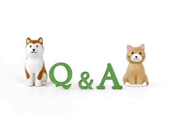 犬と猫のQ&A